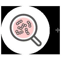 Fermentation: Viterba Mikroorganismen